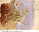study-of-marigolds-1918